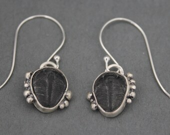 Sterling Silver Fossil Earrings, Fossil Jewelry, Triolobite Earrings, Dangle Drop Earrings, Rustic, Organic, Earthy, Boho Jewelry, Raw