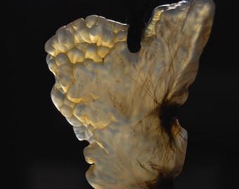 SAGENITE Agate Pendant from Succor Creek - Oregon - soooo FINE !!