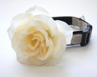 White Rose Dog Collar Attachment