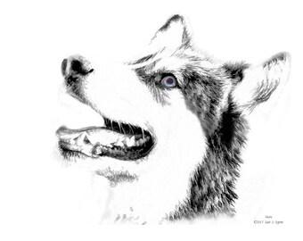 Husky dog print, dog art, dog lover gift, dog picture, dog wall art, dog photography, animal print, animal art, home décor art, wall décor