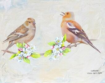 bird print, chaffinches print, bird art, wildlife print, wildlife art, woodland birds, bird wall art, children's wall art, kids wall art