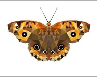 Butterflies  (digital files) special listing mtmama1000