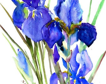 Blue purple Irises Painting, original watercolor painting, 12 X 15 in,