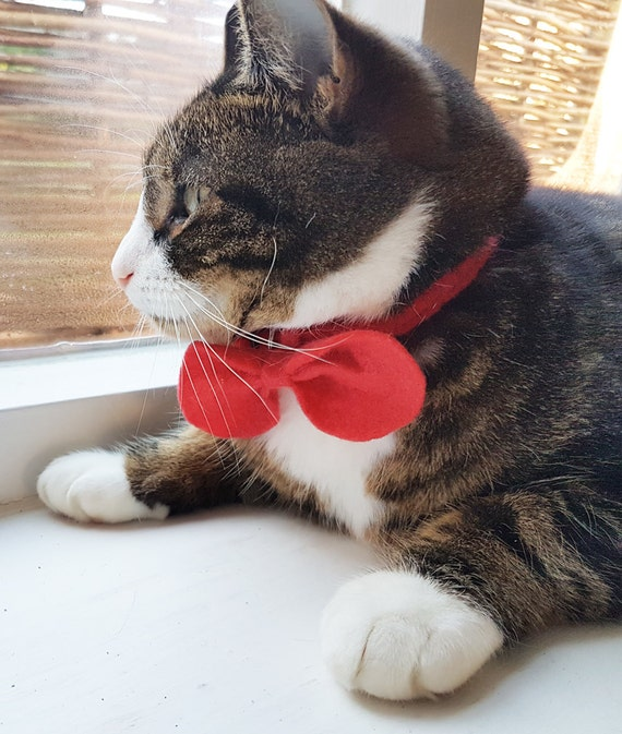 Cat Collar with Bow Tie Cat Collar Red