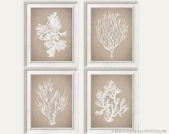 Taupe Bedroom Art, Coral Print, Taupe Beach Decor, Tan And White Wall Art