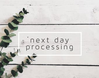 Next Day Processing, Rush Order, Speedy Delivery