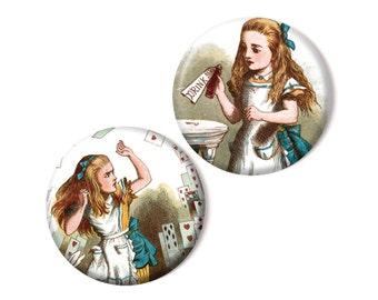 2 magnets, Alice in Wonderland