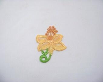 Yellow Stamen Flower 4895