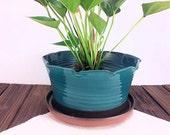 Large planter flower pots...