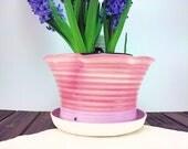 Medium pink ceramic plant...