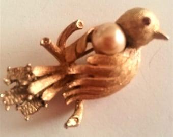 Signed CORO Bird Brooch Vintage 1940s Old Costume Jewelry Estate Genuine Pearl Red Rhinestone Eye