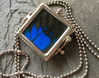 Emperor Blue Swallowtail Butterfly Pendant