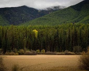 Glacier National Park Photograph, Lake McDonald Photography Print, Montana, Going to the Sun Road, Wall Decor, Fine Art Print, Apgar Village