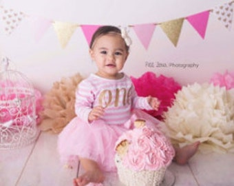 Girls First Birthday Outfit, Pink and Gold First Birthday Outfit, Gold First Birthday Outfit, First Birthday Outfit Girl, Tutu, Tutu Dress