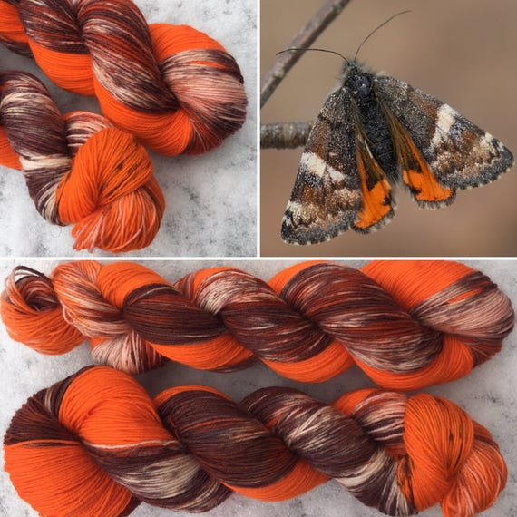 Orange Underwing, 75/25 Bluefaced Leicester nylon blend speckled indie sock yarn