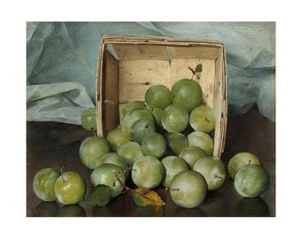 Green Plums, Still Life, American Oil Painting Print