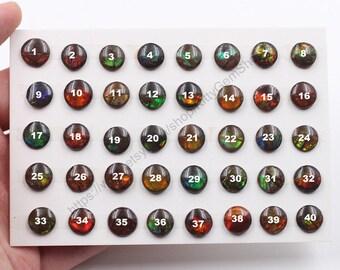 9-10mm Round Ammolite Cabochons