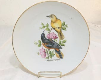 Vintage Baltimore Oriole Plate by Bareuther Waldsassen Bavaria Germany