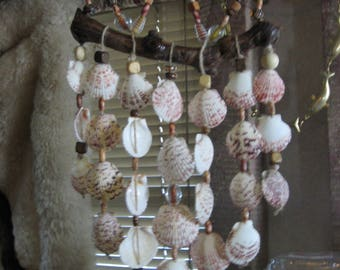 Seashell Windchime on Driftwood w/large Scallops&foil glass beads,and painted wood beads 'Handmade by me'