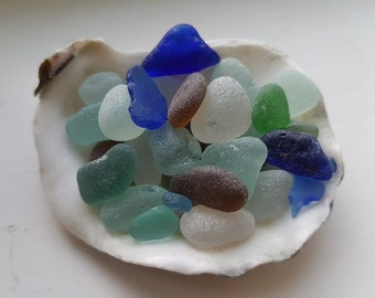 OYSTER SHELL ~ Filled With 30 Pieces Of SEAHAM ~ Blue Green Amber White Teal Seafoam ~ Sea Glass