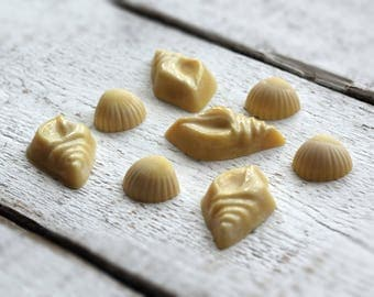 Organic Bath Melts with Shea and Cocoa butters, Sweet Almond Oil and Rosewood & Bergamot essential oils. 50g.