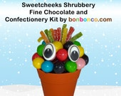 Chocolate and Fruit Sweets Shrub Kit by Bonbonco