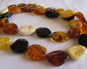 Mixed Color Large Flat Amber Bead Necklace