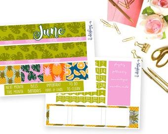 June Monthly Bundle
