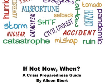 If Not Now, When? ebook