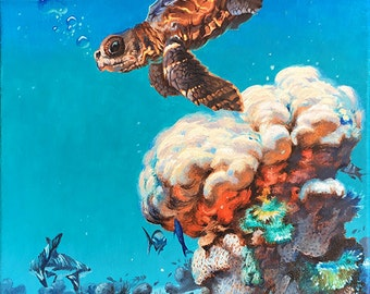 """Baby Sea Turtle - """"Hide and Seek"""" Fine art print- Island Collection by Phil Roberts"""