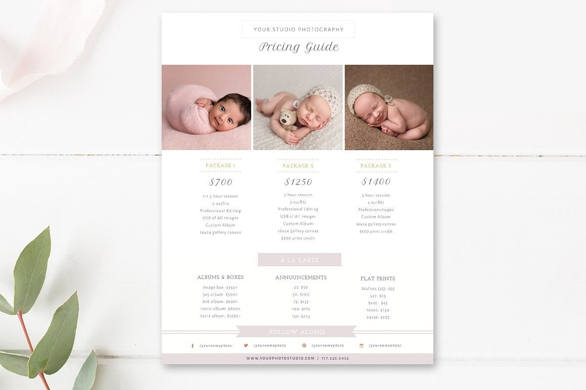Newborn Pricing Template Photography Pricing Guide Price