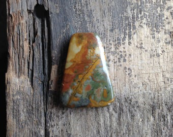 Owyhee Jasper Cabochon - Trapezoid - Green, Gold and Rust