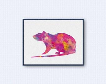 Rat Watercolor Poster