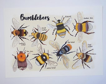 Bumblebee Nature Print