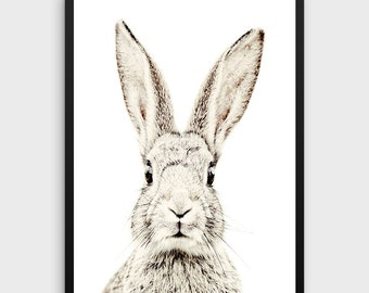Nursery Rabbit Print   Rabbit Baby Nursery, Rabbit Print Decor, Printable Rabbit Art, Rabbit Photo, Nursery Wall Art, Rabbit Poster, Bunny