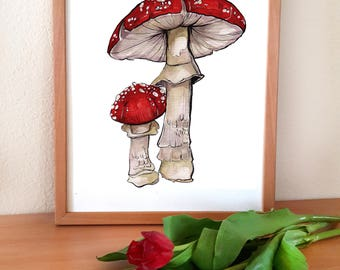 A5 Print Fly Agraric Mushroom / limited, fly agraric, mushroom, art, print, nature, mushroom