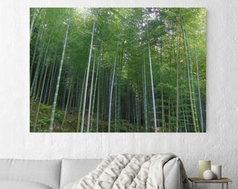 Bamboo Forest Wall Art, Print, Canvas, Nature Photography, Wildlife Photo, Japanese Photography, Bamboo Groves, Asian Wall Art, Kyoto Japan