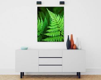 Fern Print, Wall Art Canvas, Botanical Art, Stretched Canvas Wall Art, Vertical Wall Art, Canvas Art, Fine Art Photography, Tropical Decor