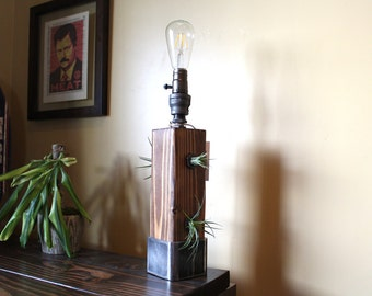 Industrial Lamp & Air Planter, desk light, edison bulb, Rustic Industrial pipe lamp / steampunk lamp / desk lamp light/ wall decor, unique