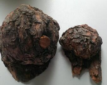 Pine Burl,Jack Pine Burl,Hand Carving,Lathe Wood,Wooden Bowl Material,Wood Working,Natural,Rare,Decor,Unique
