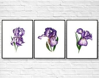Iris Flower Print Set, Floral Print Art, Flower Watercolor, Flower Painting, Floral Painting, Flower Art, Iris Print Set of 3 Kitchen decor