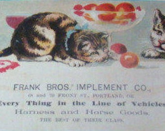 Victorian Advertising Card (Cats)