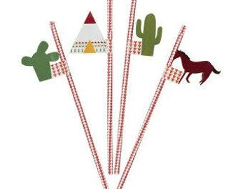 Pow Wow Party Straws