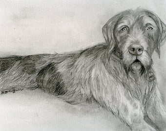 Custom Portrait of your Pet - Animal Commission from your Photo