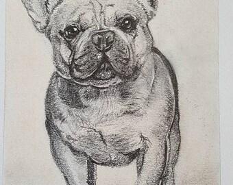 """Hand Drawn Pencil Pet Portrait 5x7"""""""
