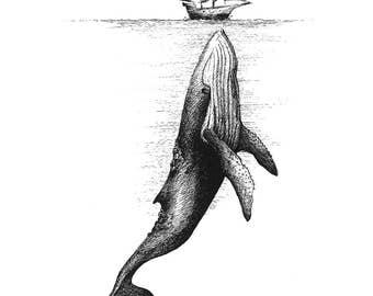 Whale & Ship Fine Art Print