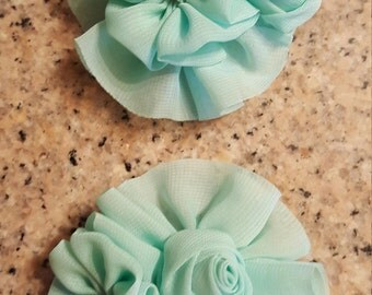 Set of 2 Hair Barrettes