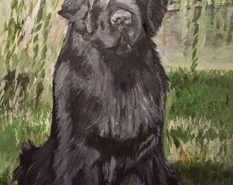 Ritratto personalizzato su ordinazione ESEMPIO - Custom order for single pet portrait