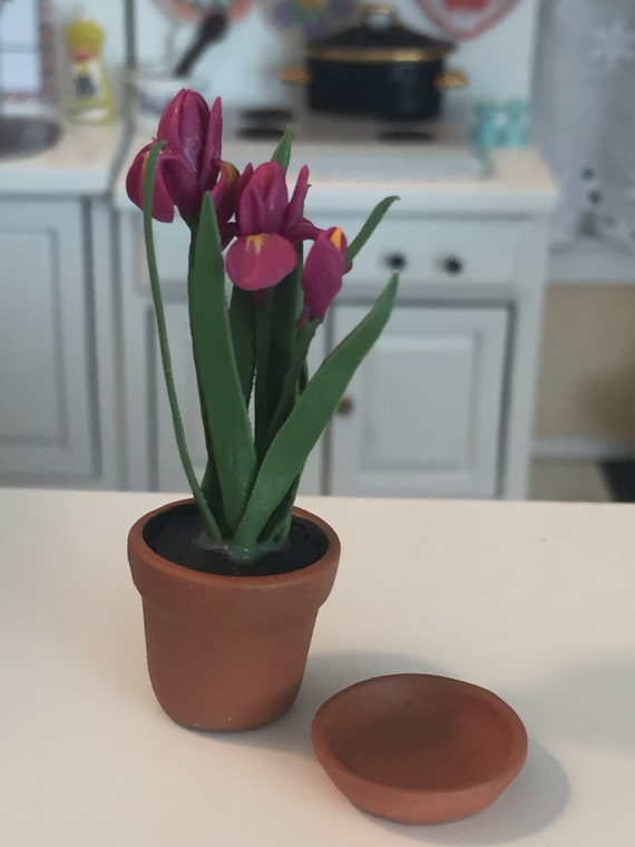 Miniature Iris, Mini Flowers In Clay With Removable Saucer, Style 1573, Dollhouse Miniature, 1:12 Scale, Miniature Flower, Mini Flower Pot