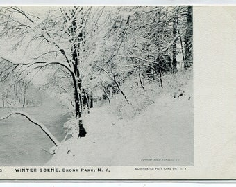 Winter Snow Scene Bronx Park New York City NY 1907c postcard